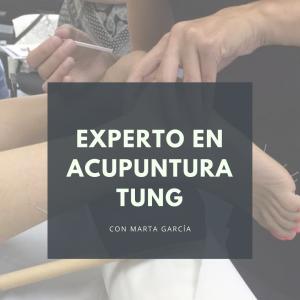 curso experto en acupuntura tung por la profesora Marta García